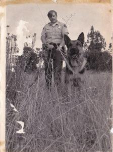 About Us - Fernbrook German Shepherds LLC